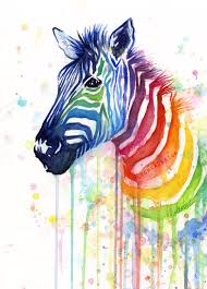 rainbow zebra watercolor olechka design