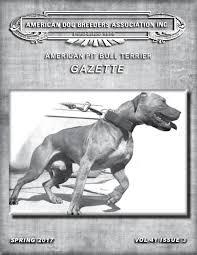 american pit bull terrier website american pit bull terrier gazette volume 41 issue 1 joomag newsstand