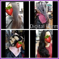 shana hair salon 37 photos u0026 46 reviews hair salons 3488