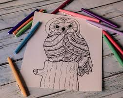 25 page owl coloring book ornamental owls owl coloring