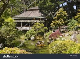 Botanical Gardens Golden Gate Park by Japanese Tea House Golden Gate Park Stock Photo 3554458 Shutterstock