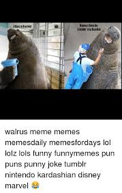 Walrus Meme - ihas a bucket noooo they be stealin my bucket walrus meme memes