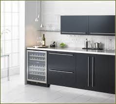 Kitchen Cabinets Refrigerator Surround by Kitchen Wine Fridge Cabinet Home Design Ideas