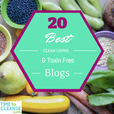 20 best clean living and toxin free blogs in 2016