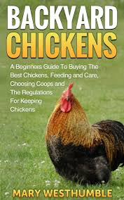 buy backyard chickens a guide for beginners in cheap price on m