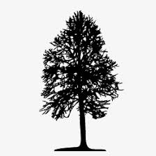 trees silhouette trees sketch tree png and vector for free download