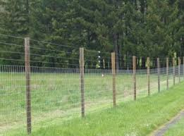 Different Types Of Fencing For Gardens - best 25 deer fence ideas on pinterest garden fences fence
