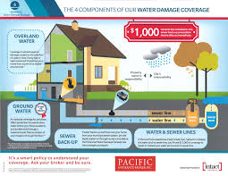 water damage not today pacific insurance broker inc
