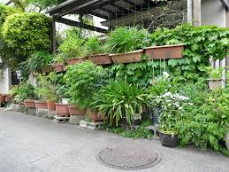 Indoor Wall Planters by Diy Wall Planters Outdoor Http Lovelybuilding Com Suitable