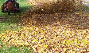 Fall Cleanup Landscaping by When Should My Fall Cleanup Be Done Thomas Concrete U0026 Landscape