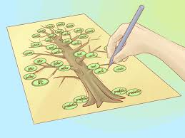Proper Way To Set A Table by How To Draw A Family Tree 10 Steps With Pictures Wikihow