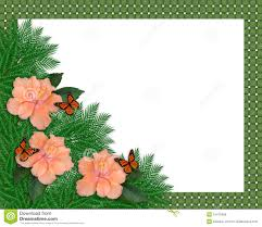 floral border hibiscus and butterflies stock photos image 15473493