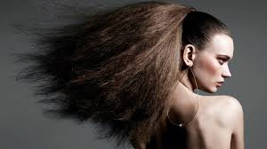 hair show 2015 braided hairstyles hairstyles 2018 new haircuts and hair colors