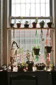 kitchen window shelf ideas 19 best plant shelves images on plant shelves balcony
