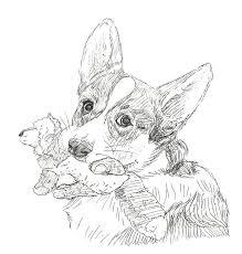 corgi with fox squeaky sketch by caresse par la lumie on deviantart