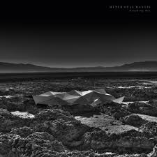 natural white opal hyper opal mantis an interview with kangding ray u2014 the brvtalist