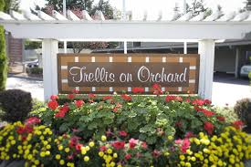 trellis on orchard apartments tacoma wa 98467
