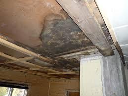 Ceiling Water Damage Repair by Repairing Kitchen Ceiling U2013 Laplander U0027s Natural Lore Blog