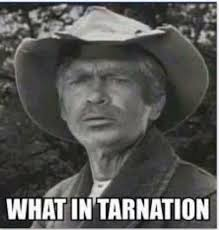 Hillbilly Memes - jed clett from the beverly hillbillies hillbilly meme and memes