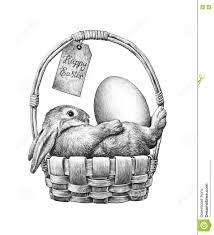 bunny basket eggs easter bunny in a basket stock illustration image of basket