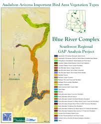 Colorado Desert Map by Blue And San Francisco Rivers Iba Arizona Important Bird Areas