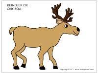 caribou reindeer printable templates u0026 coloring pages