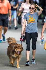 lexus amanda facebook gallery celebrity pooches go out for a stroll wjla