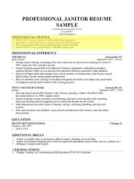 Teen Resume Builder Fake Resume Example