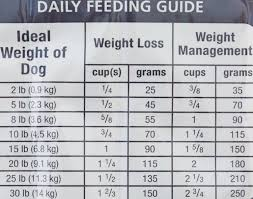 hill u0027s science diet small u0026 toy breed perfect weight dry dog