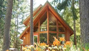 cabin home trout lake cozy cabins home