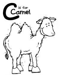letter c is for camel colouring page colouring pics
