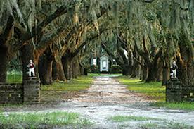 coosaw plantation chisolm beaufort county south carolina sc