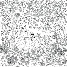 fantasy coloring pages adults art detailed download print free