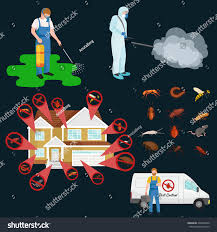 house pest control pest control illustration set professional removal stock vector
