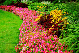 easy flower garden ideas photograph easy steps to a new ga