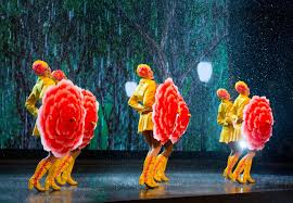 light wizards shine in rockettes show the columbian
