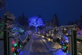 magical winter lights grand prairie 20 places to enjoy christmas dinner in victoria b c tourism