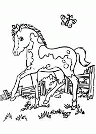realistic pony coloring page for kids for girls coloring pages
