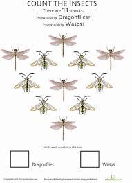 bug math practice education com