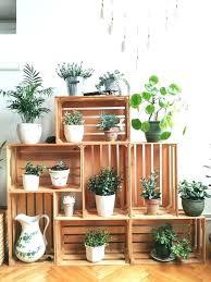 indoor plant display indoor plant stand indoor plant shelf best indoor plant stands