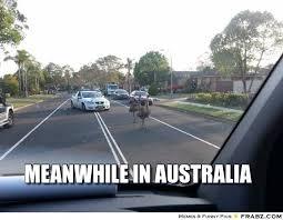 Australia Meme - what are some good memes about australia quora