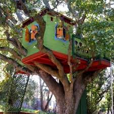 Cool Tree Houses 60 Best Amazing Tree Houses Images On Pinterest Architecture