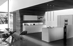 modern italian custom made kitchen cabinets available in brooklyn social links