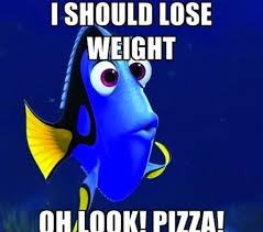 Dory Memes - the forgetful dory meme reminds us how stupid we are sometimes