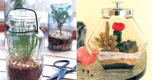 how to decorate with terrarium gardens