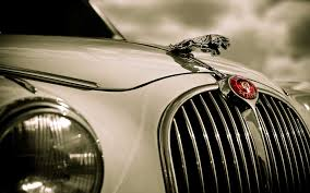 white jaguar car wallpaper hd photo collection jaguar latest hd wallpapers