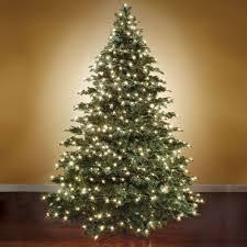 the world s best prelit noble fir 14 hammacher schlemmer