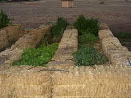 straw bale gardening archives hs blog