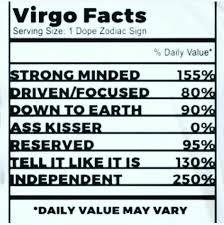 Funny Virgo Memes - pin by marissa dasalla on virgo pinterest virgo virgos and zodiac
