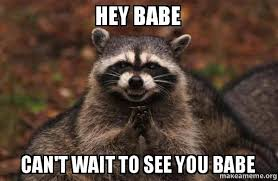Hey Babe Meme - hey babe can t wait to see you babe evil plotting raccoon make